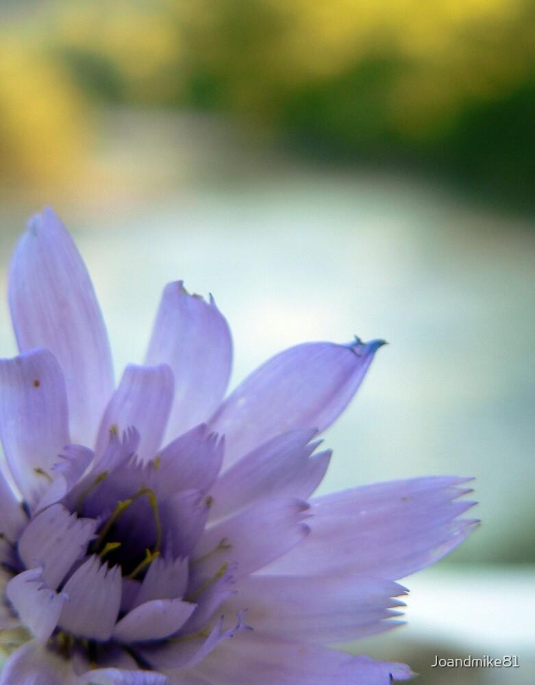 Purple River by Joandmike81