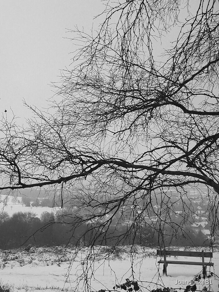 Winter by Joandmike81