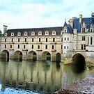 Château de Chenonceau :: Loire Valley, France by miagator