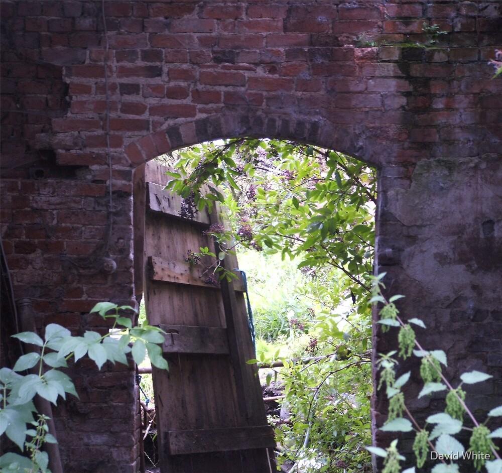Must Fix That Door  by David White