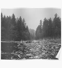 Mountain Forest Lake Water - Black and White Vintage Trees and Sky Poster