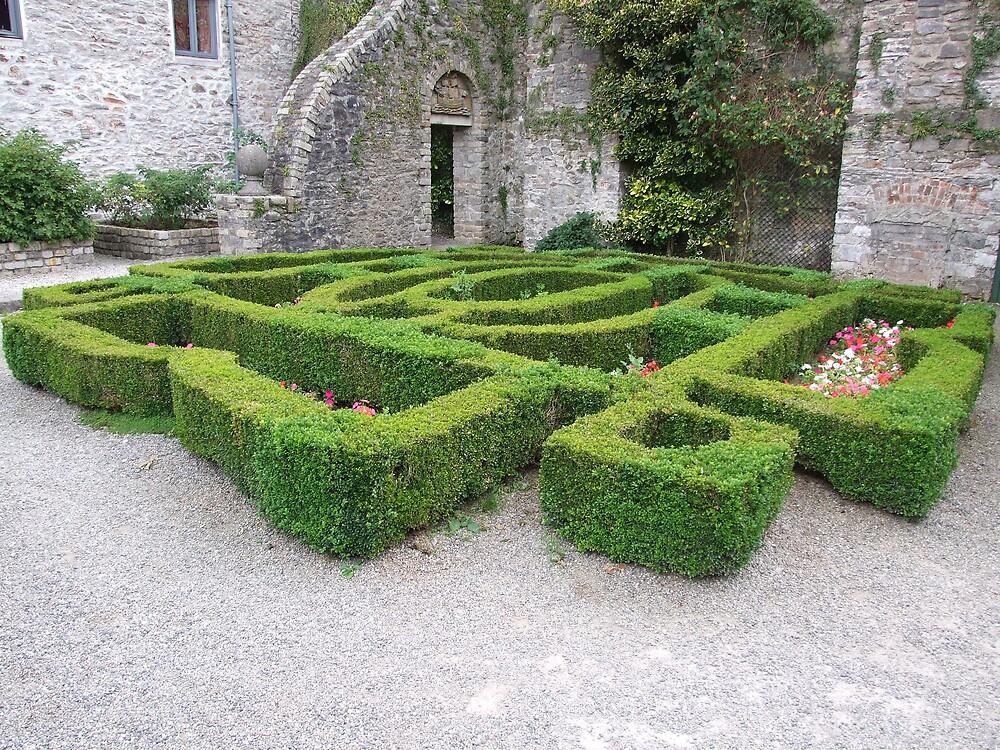 garden  by matjenkins