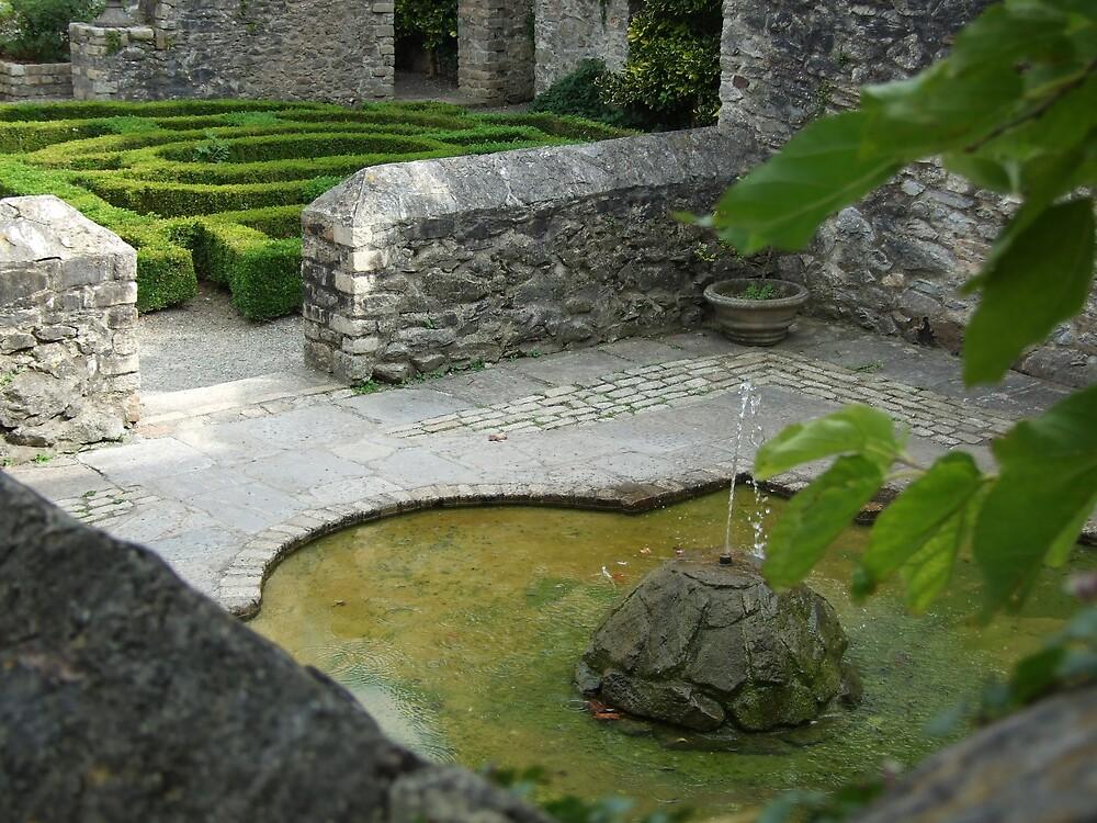 garden3 by matjenkins