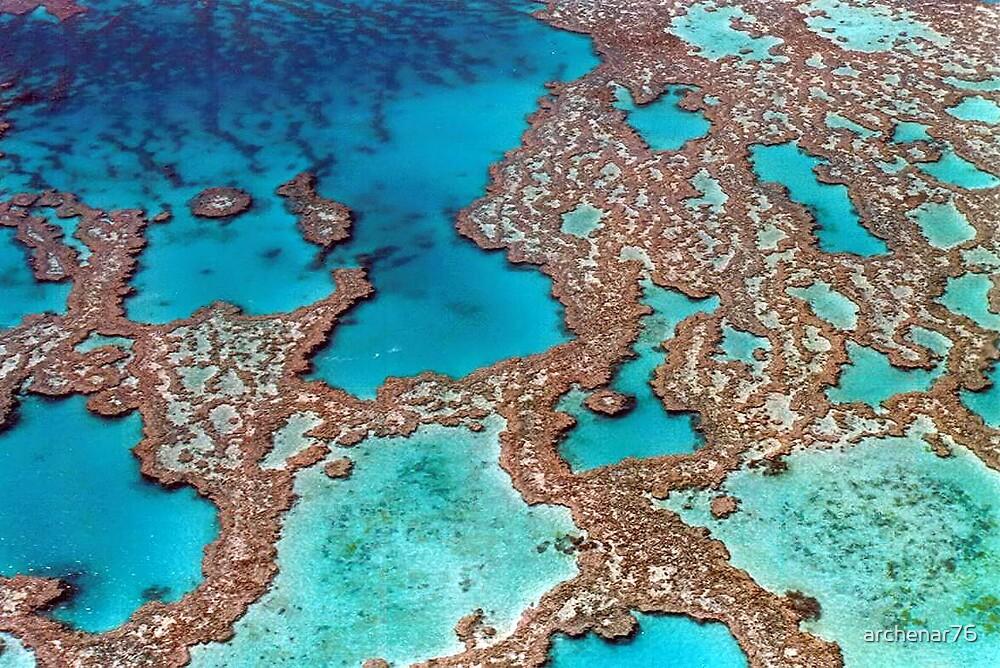 Great Barrier Reef by archenar76