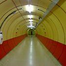 Tunnel Tube by theokojak
