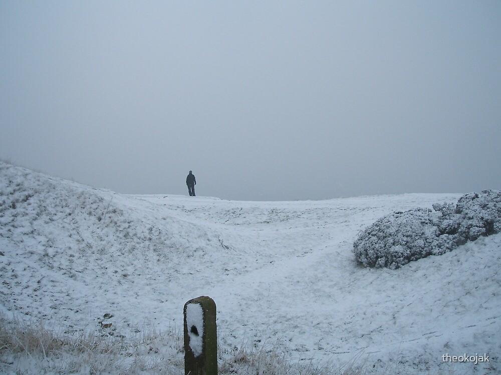 snow walk  by theokojak