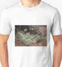 Green cactus in the Arizona desert, USA Unisex T-Shirt