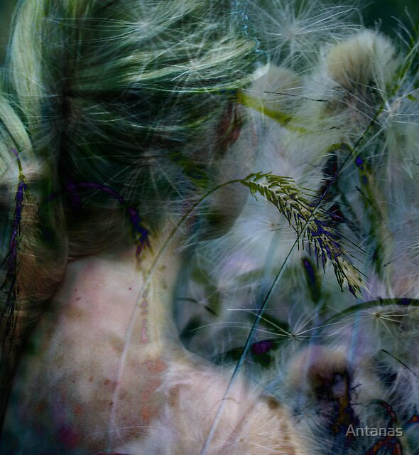 Lady in grassland by Antanas