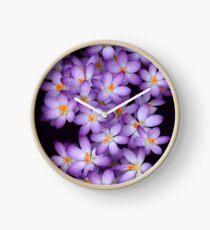 Crocus Clock