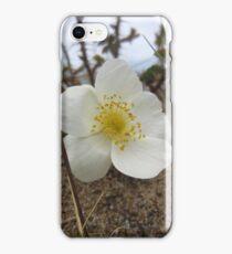 Burnet rose iPhone Case/Skin