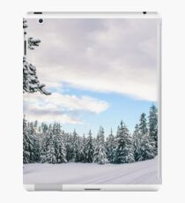 Snow Scene iPad Case/Skin