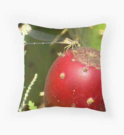Dragonfly on fruit Throw Pillow