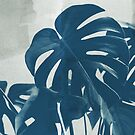 Blue Monstera #2 by ALICIABOCK