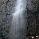 Tanninaba Falls, Qld by Brett Habener