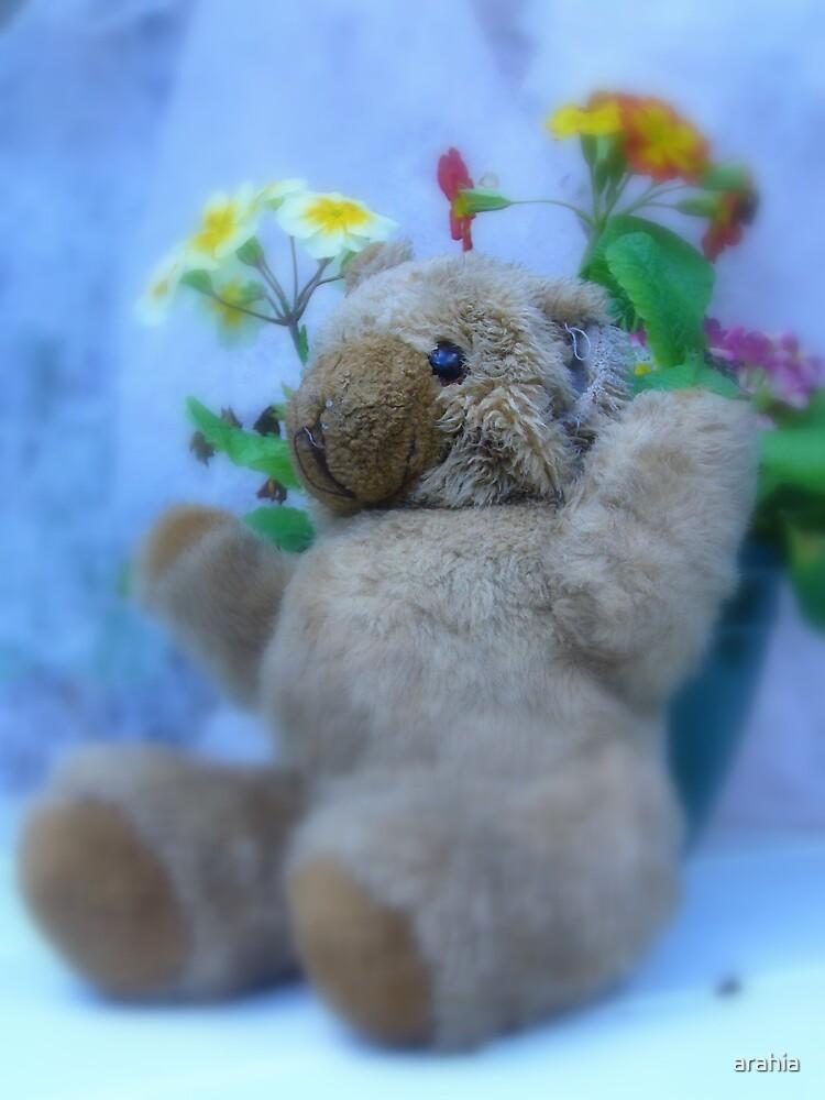 ma long lost teddy by arahia