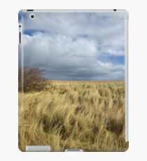 Northumberland Skies iPad Case/Skin