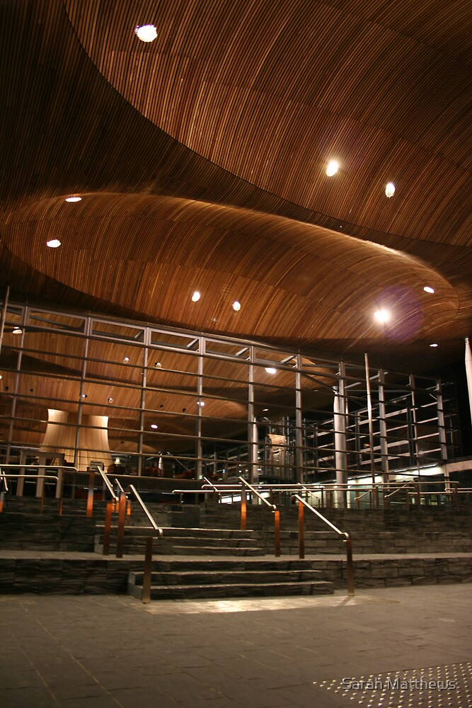 Welsh Assembly by Sarah Matthews