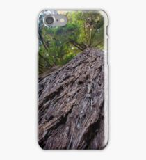 Remembering the Redwoods iPhone Case/Skin