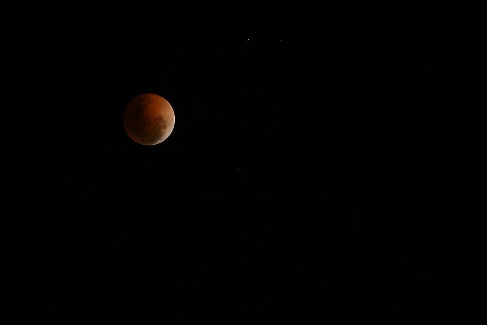 Blood Moon by Gavan  Mitchell