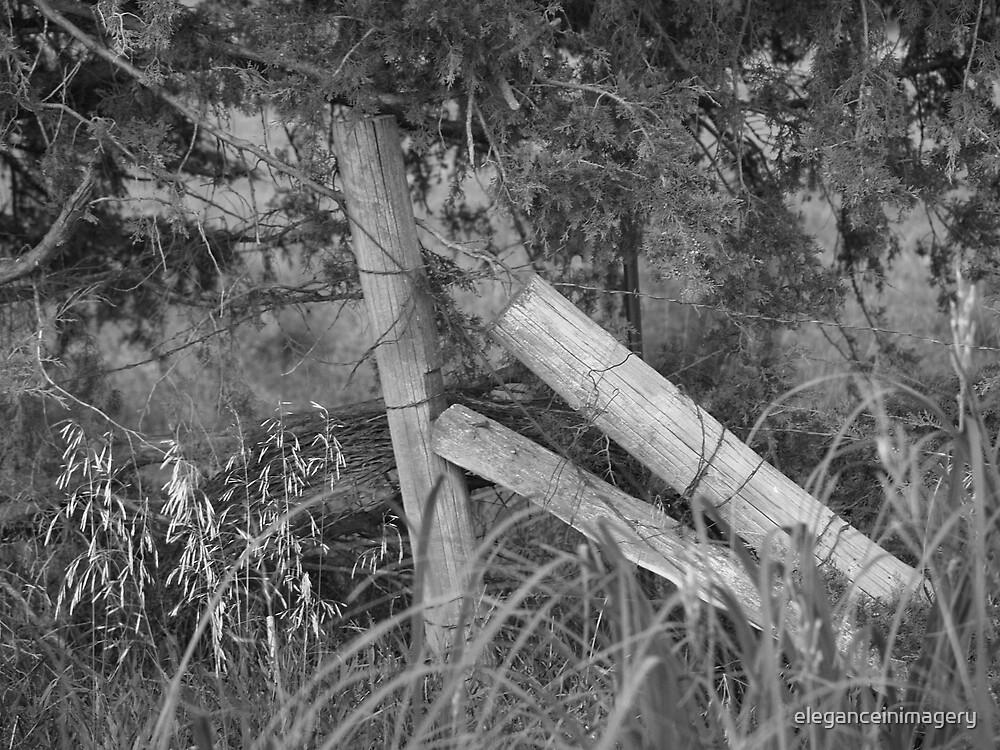 Broken Fences by eleganceinimagery