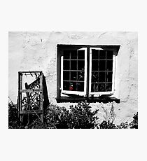 Red Jar Photographic Print