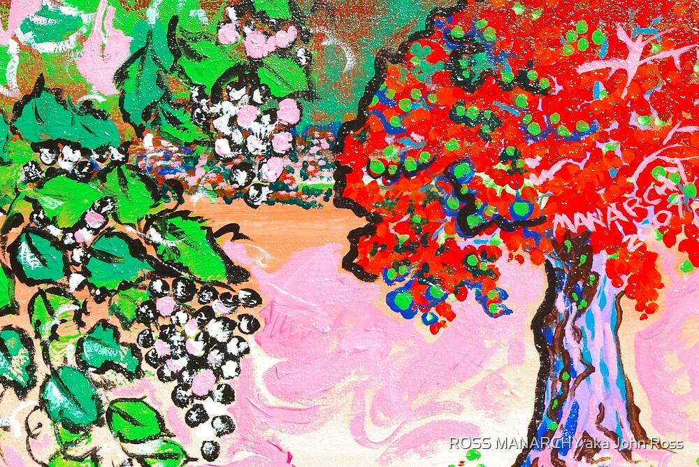 WINE COUNTRY SONOMA, CALIFORNIA by ROSS MANARCHY aka John Ross