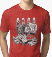 The World of Narnia Tri-blend T-Shirt