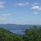 Mountain View by Lisa Woodcock