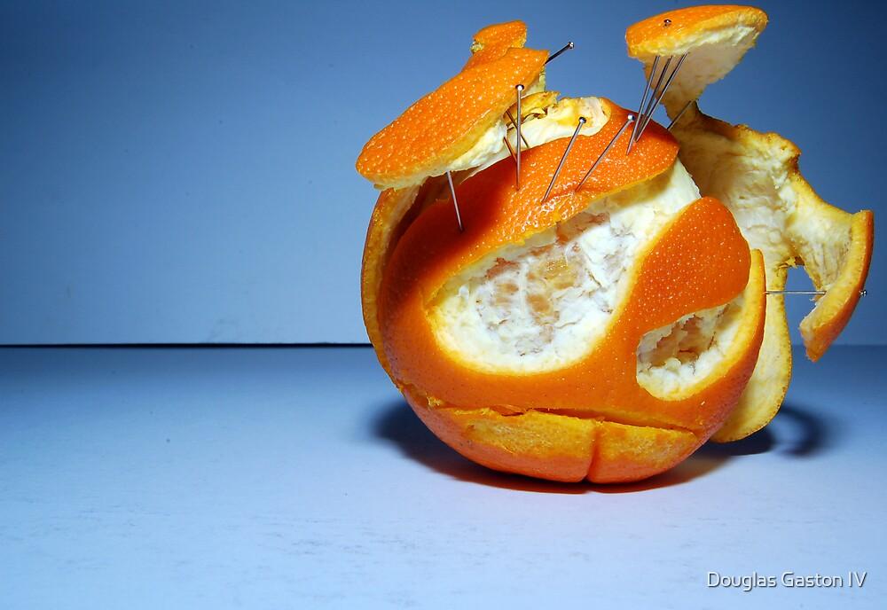 Mr. Orange by Douglas Gaston IV