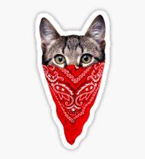 Gangster Cat Sticker