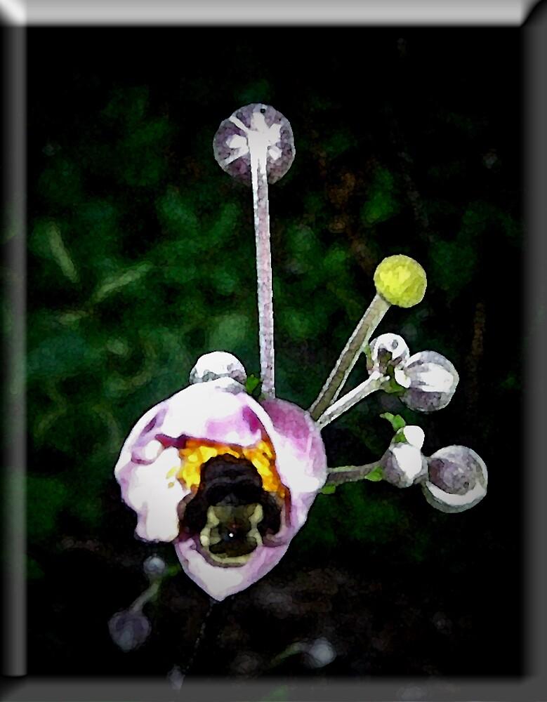 The Pollinator by Erika Benoit
