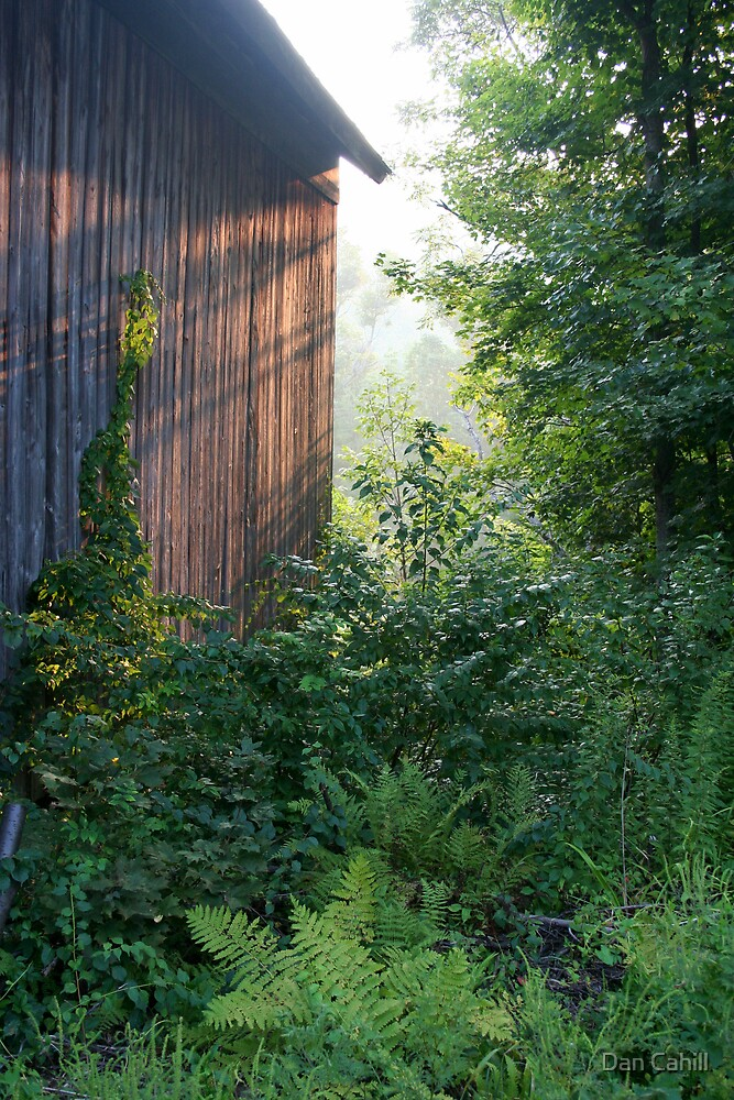 Side of a Barn by Dan Cahill