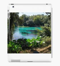 Rainbow Springs iPad Case/Skin