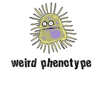 Weird phenotype by velica