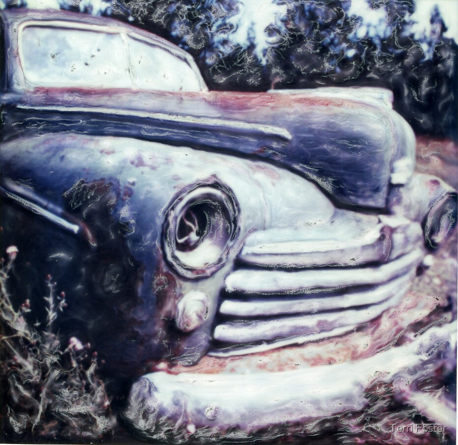 Old Car  by Terri Foster