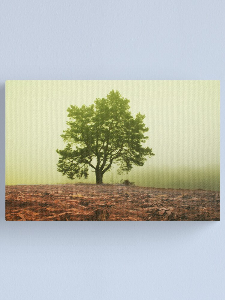 Alternate view of The tree in fog Canvas Print