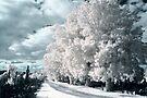 Heaven by lightsmith