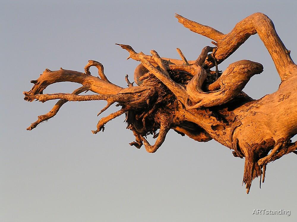 Galloping Tree by ARTstanding
