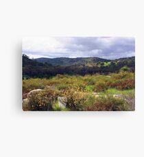 Avon Valley - Western Australia  Canvas Print