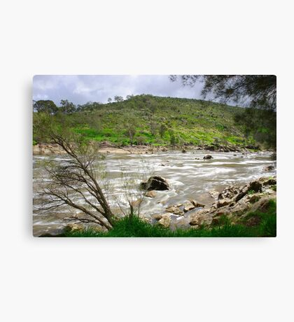 Rapid River Canvas Print