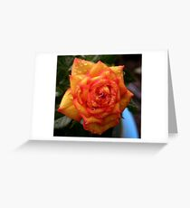 Bleeding Rose Greeting Card