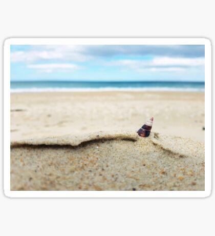 Scamander Beach Sticker
