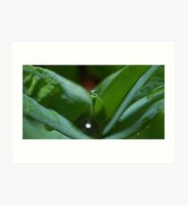 Waterdrop Art Print