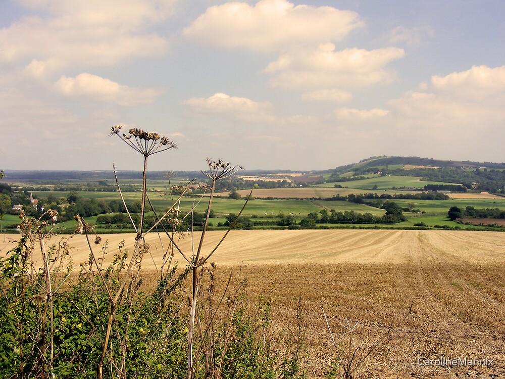 Tranquil Sussex Landscape by CarolineMannix
