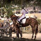 Horse Rider Awaiting by DAntas