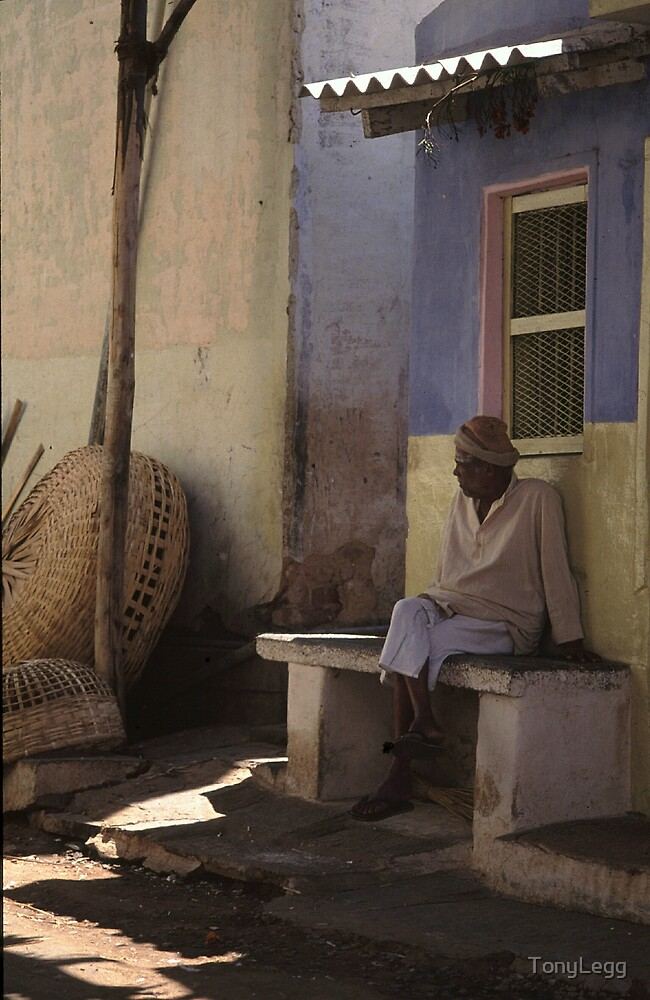 Afternoon shade .. Mysore  by TonyLegg