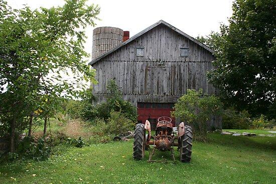 The Small Family Farm by Dan Cahill