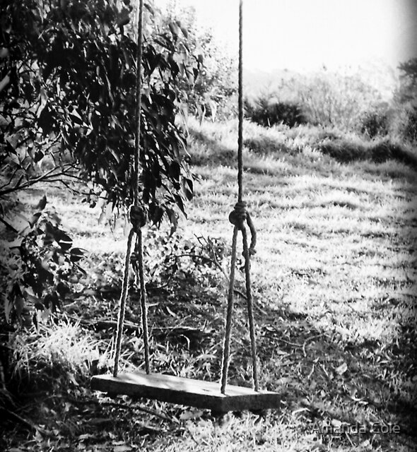 Swing by Amanda Cole