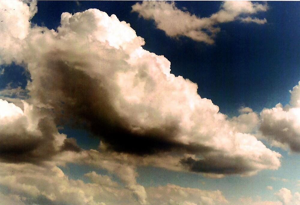 Brewing Storm by Steven Slusher