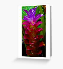 Lava Flower Greeting Card